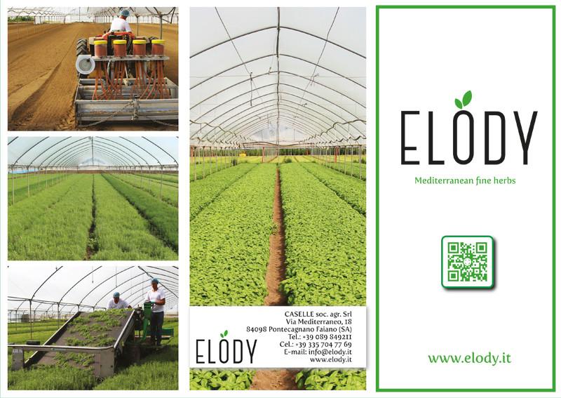 brochure elody - piano alto